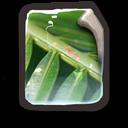 Generic Image File icon