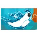Animal, Bird, Follow, Twitter icon