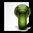Application, Python, x icon