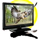 eagle, d icon