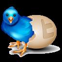 twitter egg icon