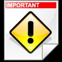 important, file icon