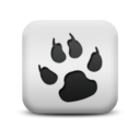 animal,dog,print icon