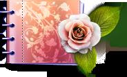 plant, carnet, love, flower, valentine, catalog, rose, lovely icon