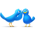 bird, animal, gossip, social, sn, twitter, social network icon