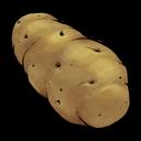 vegetable, fruit, potato icon