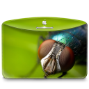 Folder Nature Insect icon