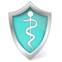 Health care shield icon