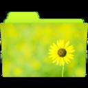 folder,sunflower,flower icon