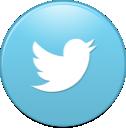 twitter, bird, new icon