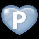 social, pingfm, media icon