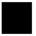 copy, avg icon