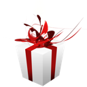 Christmas, Giftbox, Present icon