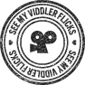 viddler, functionsocial, base icon