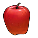 fruit, vegetable, apple icon