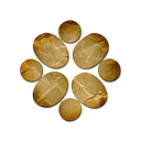 ziki icon