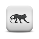 animal,monkey icon