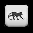 animal,monkey icon