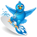 bird, twitter, surfing icon