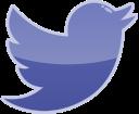 social, bird, media, twitter icon
