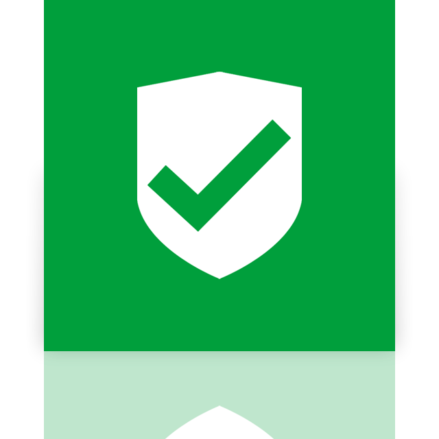 security, mirror, approved icon