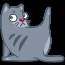cat clean icon