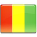 guinea,flag,country icon