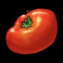 tomato,fruit,vegetable icon