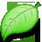 plant, babylon, leaf icon