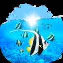 animals,fishes icon