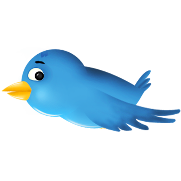 bird, sn, social network, twitter, animal, social icon