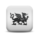 animal,dragon icon