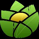 version icon