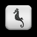 animal,seahorse icon
