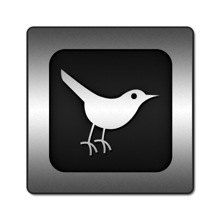twitter, social network, social, sn, square, animal, bird icon