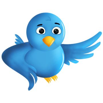 social network, twitter, animal, sn, bird, social icon