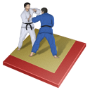 px, judo icon