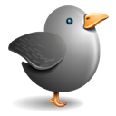 gray bird, twitter, bird, grey icon