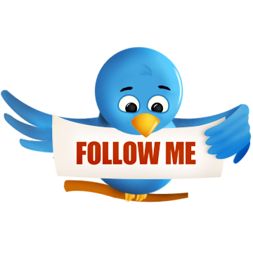twitter, social, sn, social network, animal, bird icon