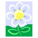 plant, flower, white icon