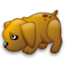 dog,animal icon