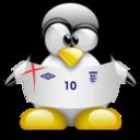 england,penguin,animal icon