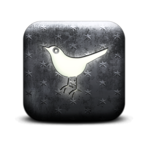 sn, bird, social, social network, twitter, animal icon