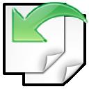 document, paper, revert, file icon