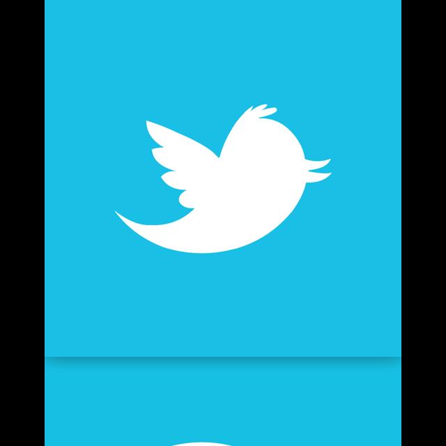 twitter, alt, mirror icon