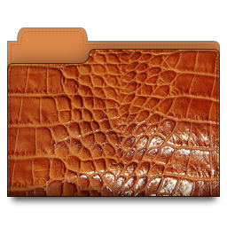 folder, leather, brown icon