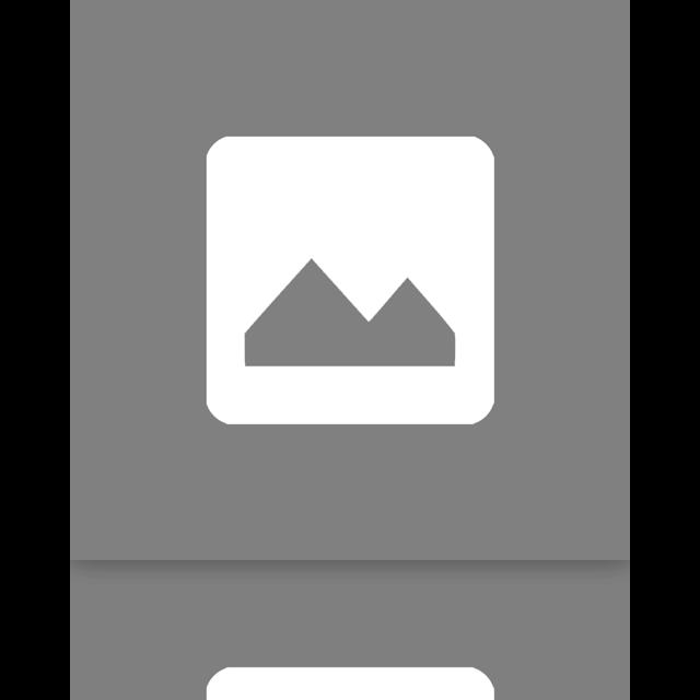 doc, google, image, mirror icon