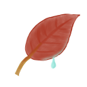 Ak, Leaf icon
