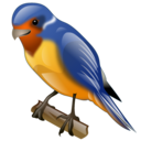 swallow, animal, twitter, bird icon