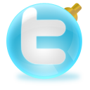twitter, christmas icon